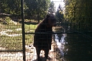 Jászberény Állatkert_6